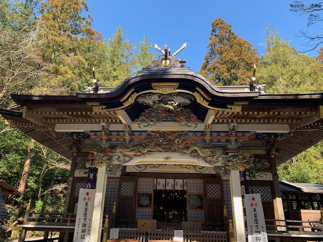 秩父3社 宝登山神社の魅力(蝋梅もいい香り)